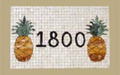 address pineapple